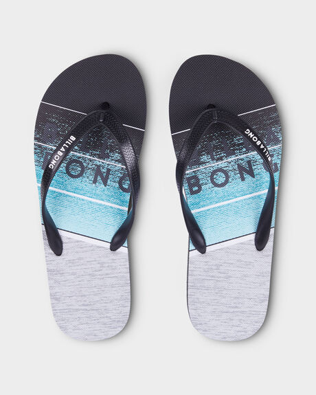 NORTHPOINT THONGS