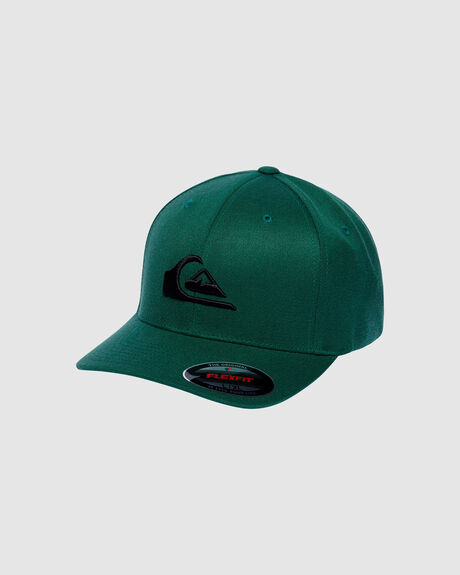 MOUNTAIN AND WAVE FLEXFLIT CAP