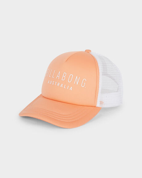 ALL TIME TRUCKER CAP