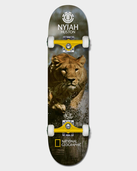 NAT GEO NYJAH LION 7.75