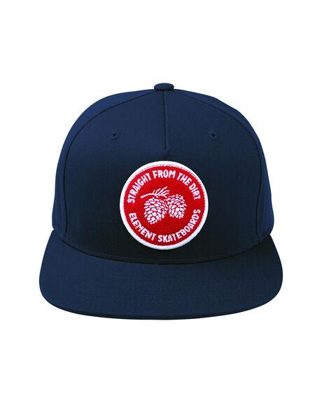 Youth Pinecones Cap